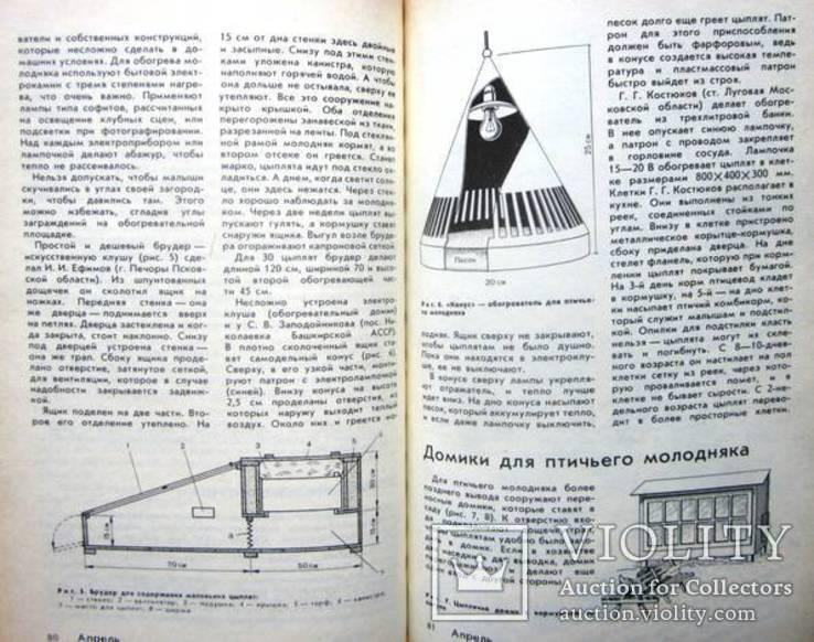 Календарь животновода-любителя, фото №10