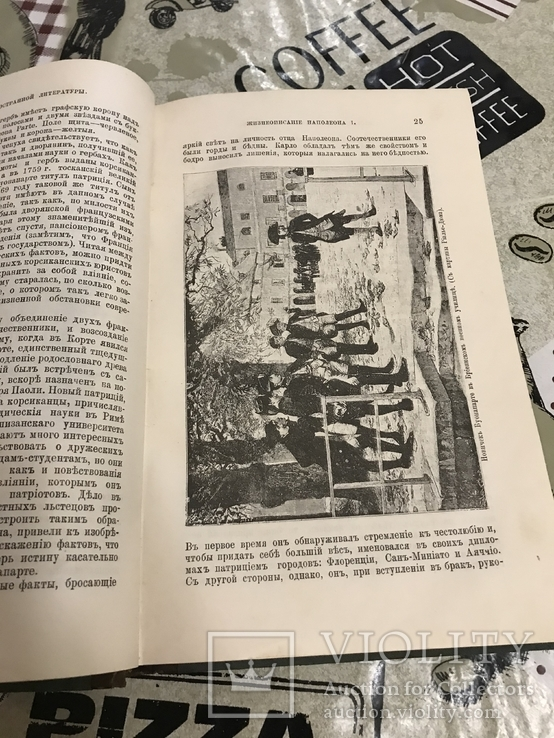 Жизнеописание Наполеона История 1895 года, фото №10