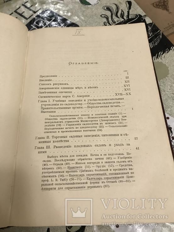Промышленное плодоводство 1898 год, фото №10