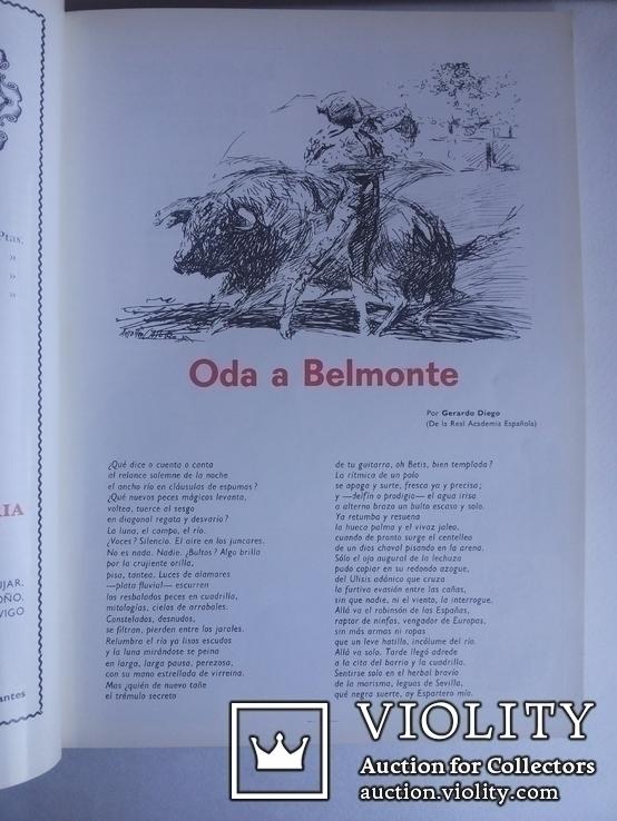Коррида Бильбао 1969 альманах номерной № 1843, фото №7