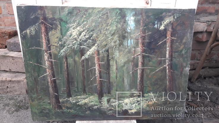 Пищанский лес., фото №2