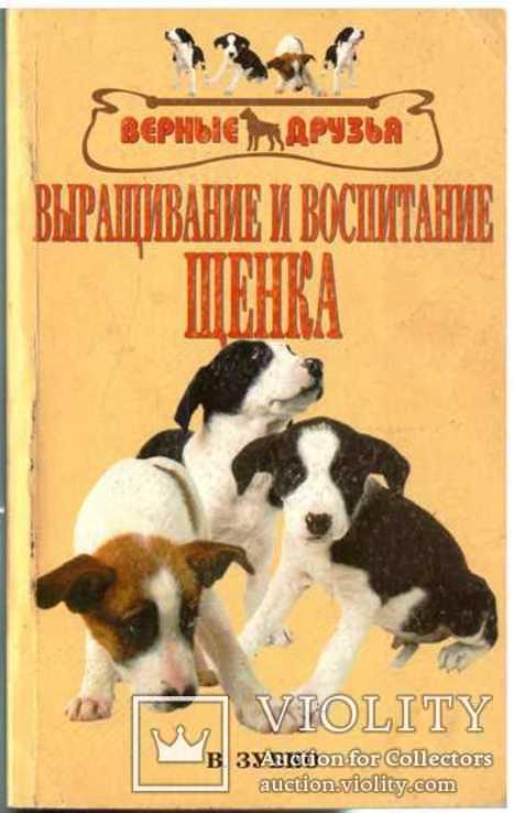 Выращивание и воспитание щенка.2005 г., фото №2