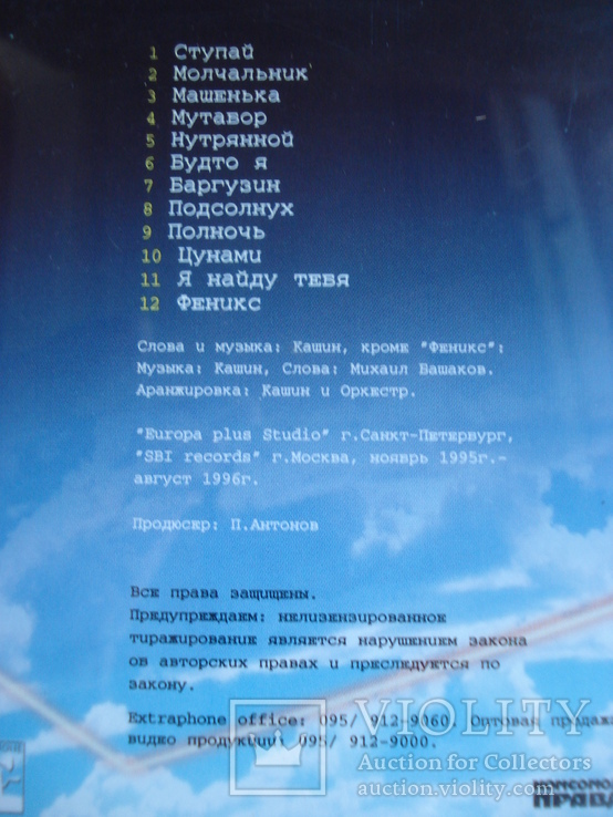 "Павел Кашин ""Подсолнух"", фото №7"