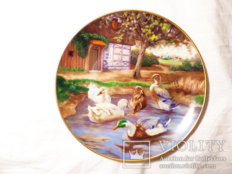 2 шт. - Тарелка   настенная -- Германия - kaiser - 24 см  -- утки лошади рыбалка, фото №3