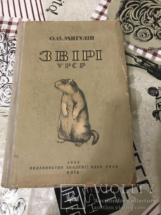 Звірі України 1938рік, фото №3