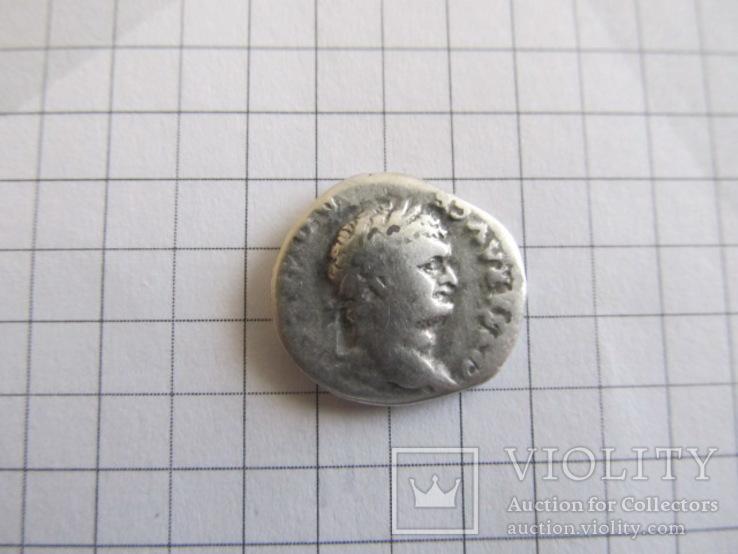 Денарий Домициана - всадник, фото №3