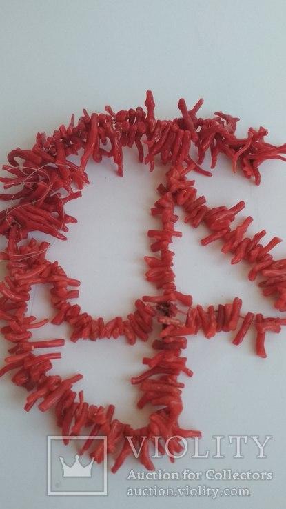 Коралл 61 грамм, фото №8