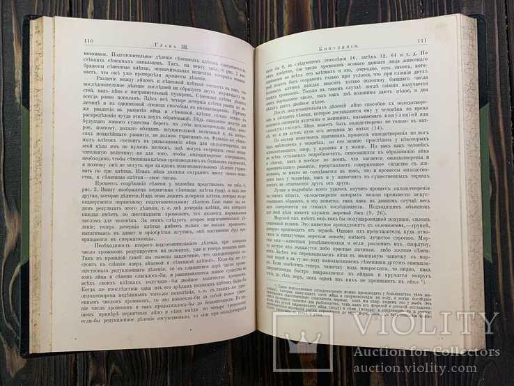1909 Гюнтер, К. Происхождение и развитие человека, фото №4