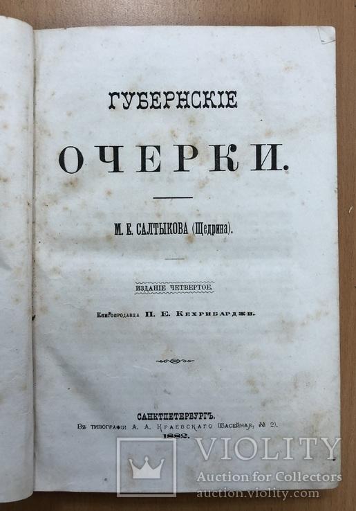 Губерские очерки Салтикова. СПБ 1882 года, фото №2