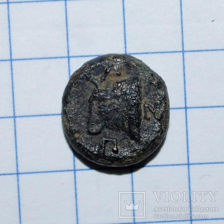 Пантикапей.  Бычек  ПАN    IV в.до.н.э., фото №3