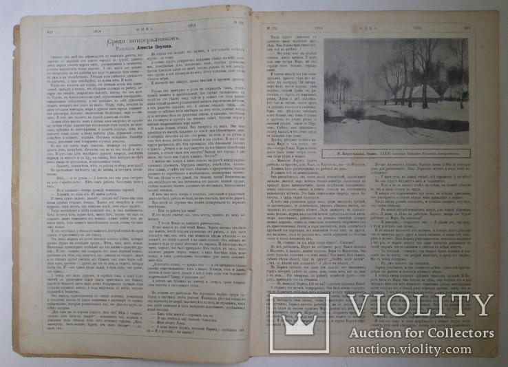 Журнал Нива №23 1914 г, фото №4