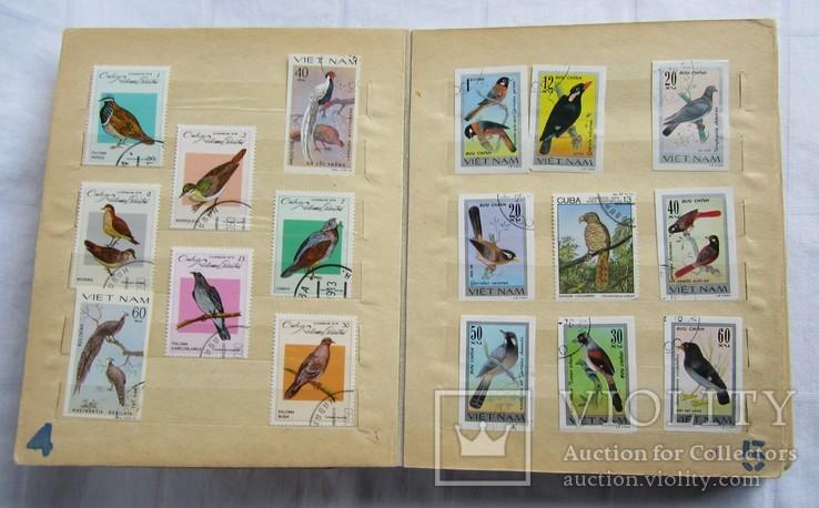 Почтовые марки флора фауна, фото №5