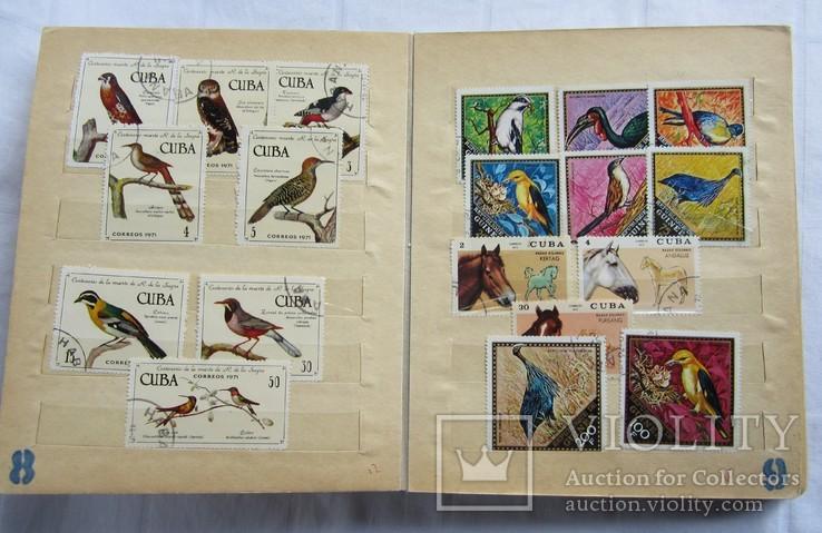 Почтовые марки флора фауна, фото №7