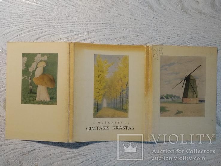 Cimtasis Krastas 29 открыток, фото №2