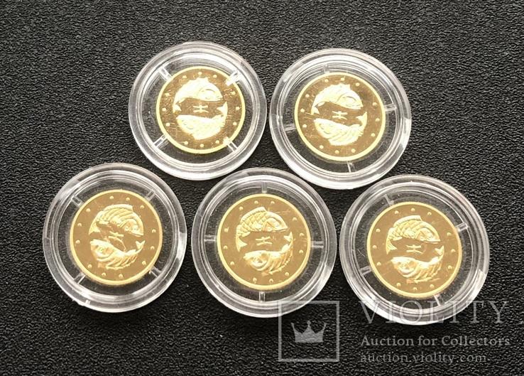 2 гривні 2007 рік. Риби. Золото 1,24 грам - 5 монет., фото №4