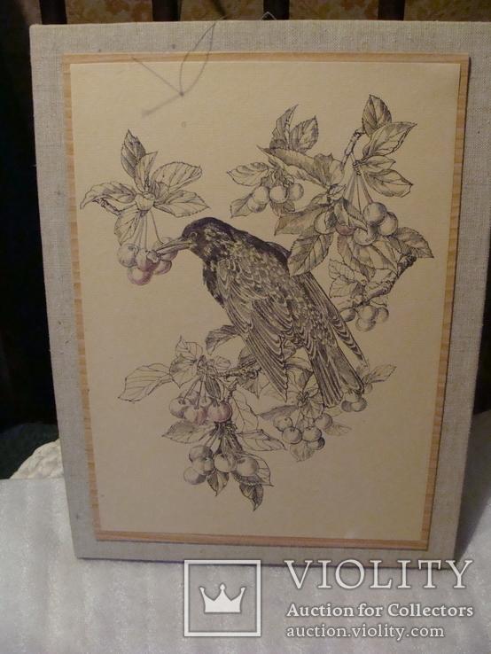 Графика - птица, фото №4