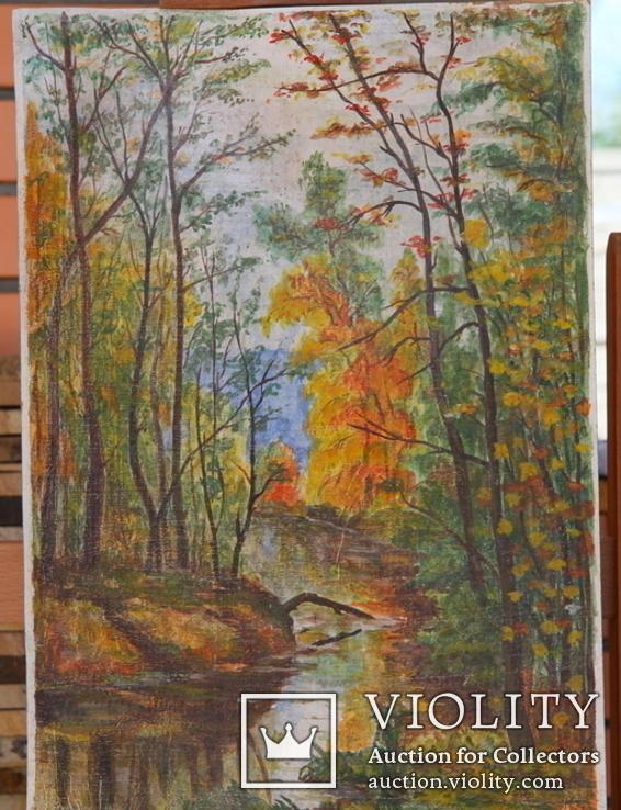 Осенний лес., фото №2