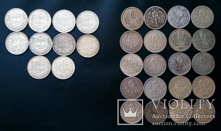 Комплект 1 крони по роках. Австрійський і угорський типи. 30 монет без повторів, фото №2