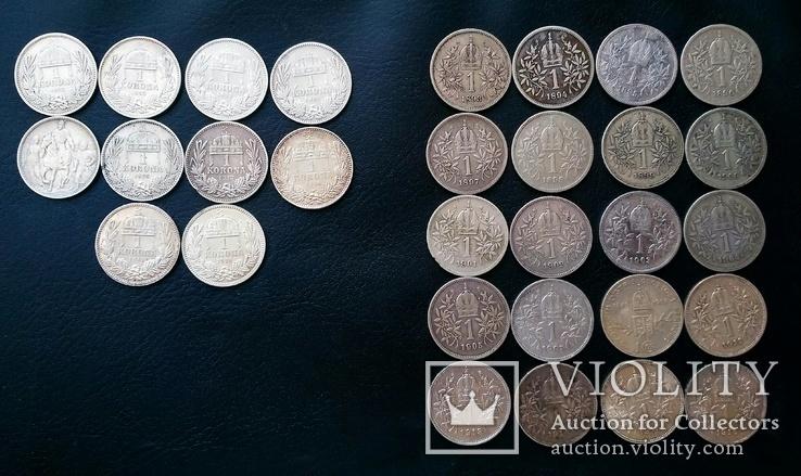 Комплект 1 крони по роках. Австрійський і угорський типи. 30 монет без повторів, фото №3