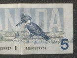 Канада Canada - Долар Dollar Доллар - 5 - P95 - 1986, фото №5