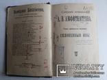 Амфитеатров А В Склоненные ивы 1913 г, фото №2