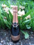 Шампанское Игристое вино Vino Spumante - Brut Pinot di Pinot Rose  0.75L gr 11.5 Италия