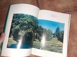 Уманское чудо Софиевка Умань 1977г. Роготченко, фото №12