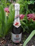 Шампанское Игристое вино BARBERO  0.75L gr 12.5 ASTI Италия