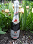Шампанское Игристое вино BARBERO  0.75L gr 12.5 ASTI Италия фото 2