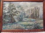 Лесной пейзаж, Повилайтис, фото №2