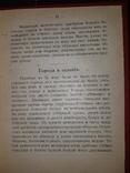 1915 Жизнь наших предков в удельный до-татарский период (1055-1228 г.), фото №5