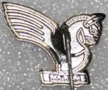 """Значок-логотип """"Иранские авиалинии"""" (Иран) тяжелый, фото №3"""
