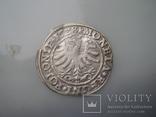 Грош 1528 г, фото №5