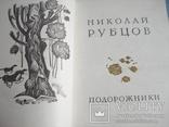"Николай Рубцов ""Подорожники."", фото №3"