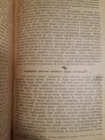 1907 Английские экономисты, фото №6