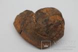 Кам'яний метеорит NWA, пустеля Сахара, 381 грам, фото №2