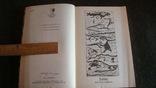 Лист работы Мелкина и другие волшебные сказки, фото №4