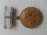 """""""Материнство"""" медаль, II степень"""