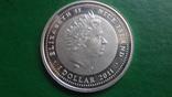 1  доллар 2011  Ниуэ год Дракона   серебро     (2.3.10)~, фото №5