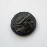 Селевкиды, Антиох VIII Епифан (Грип), 121 — 96 гг. до н. э. - Орел, фото №2