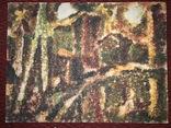 Едуард Усов, 88х65см, 1970г, фото №2
