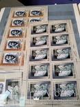 Лот  негашеных марокРоссии за 2006г с блоками и малыми листами, фото №3