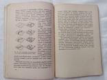 Занимательная механика 1930 года, фото №5