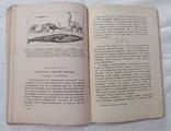 Занимательная механика 1930 года, фото №7
