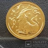 25 рублей 2005 год.Козерог., фото №2