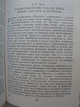 """""""Культура, человек и картина мира"""" Арнольдов А.И., Кругликов В.А., 1987 год. тираж 7 500, фото №9"""