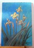 Картина «Рассвет.Ирисы»(5)  Художник Ellen ORRO  двп/акрил  17х24  2019 г фото 5