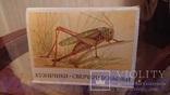 """Советские открытки """"Кузнечики. Сверчки. Кобылки""""(изд-во""""Изобразительное искусство"""",1990г.), фото №2"""