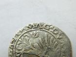 1/2 гроша 1563 р. 4SA282-33, фото №6