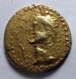 Золотой статер Херсонеса, фото №4